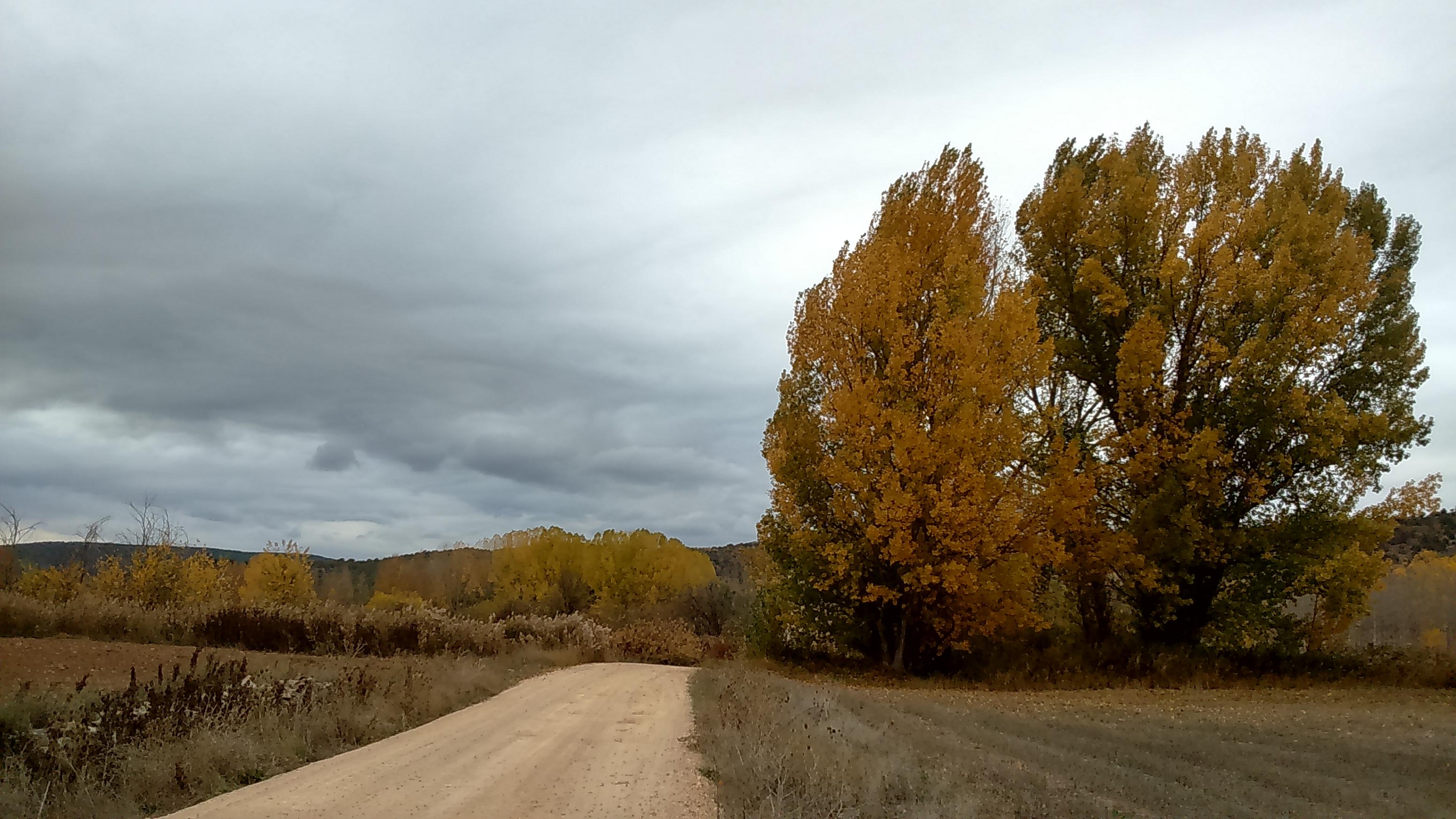 camino_al_mundo_rural